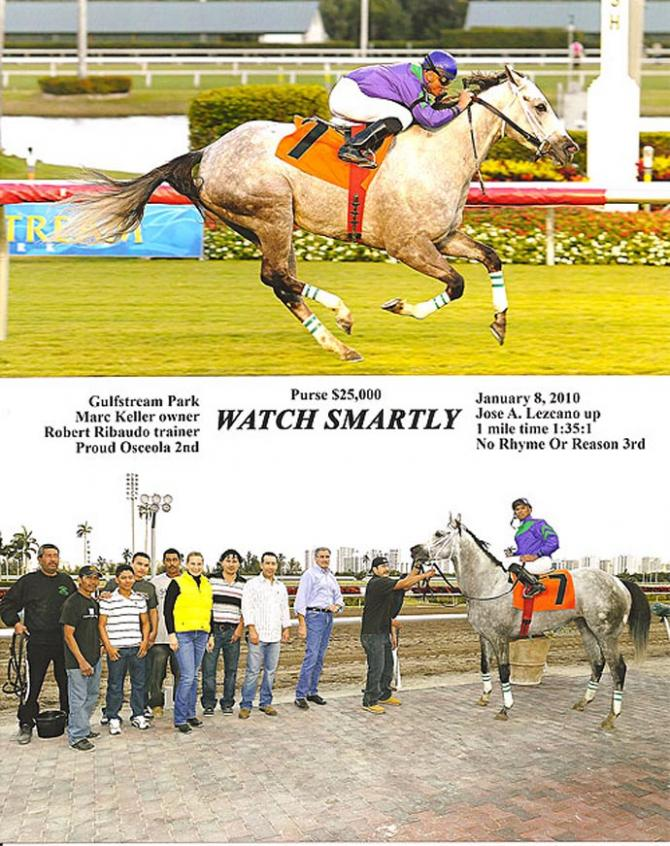 Watch Smartly